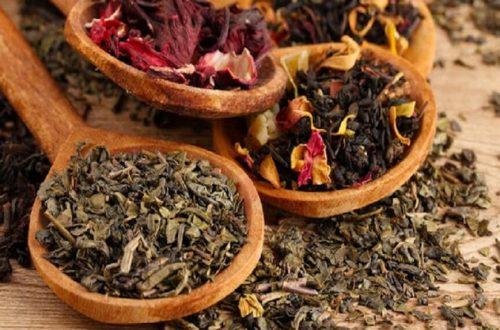 Beberapa Herbal
